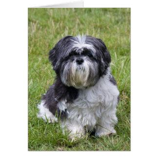 Tarjeta de nota en blanco linda del perro de Shih