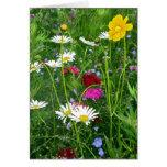 Tarjeta de nota en blanco: Wildflowers de la prima