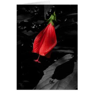 Tarjeta de nota floral del casquillo rojo de los t