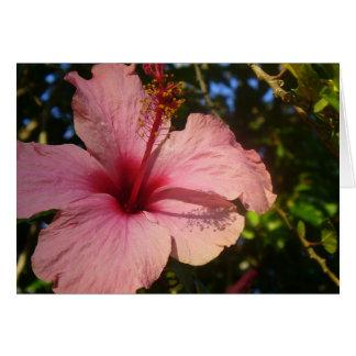 Tarjeta de nota horizontal de la flor del Caribe