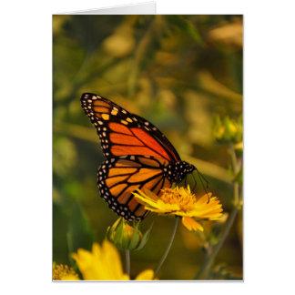 Tarjeta de nota interior de monarca del espacio en
