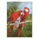 Tarjeta de nota - pájaros tropicales