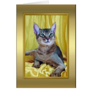 Tarjeta de nota pedigrí del gato