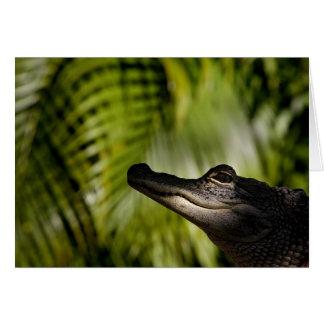 Tarjeta de nota sombría del cocodrilo