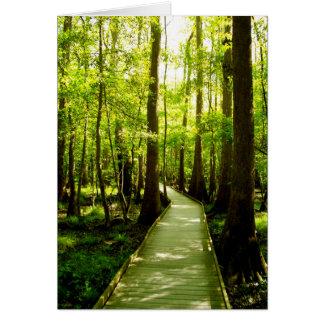 Tarjeta de nota - trayectoria de bosque tarjeta pequeña