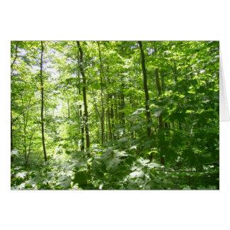 Tarjeta de nota verde del bosque
