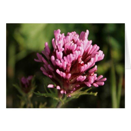 Tarjeta de nota - Wildflower