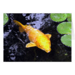 Tarjeta de oro de la foto de los pescados de Koi