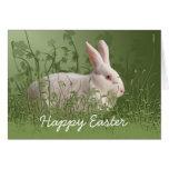 Tarjeta de pascua blanca del conejo