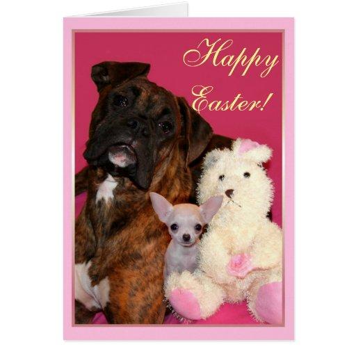 Tarjeta de Pascua de felicitación feliz del boxead