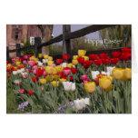 Tarjeta de pascua del jardín del tulipán