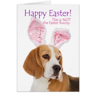 Tarjeta de pascua divertida del beagle