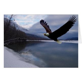 Tarjeta de reserva de Chilkat Eagle