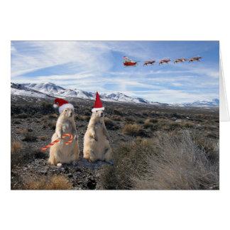 Tarjeta de Santa del perro de las praderas