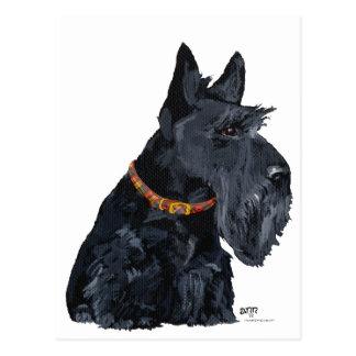Tarjeta de Terrier del escocés Postal