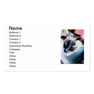 Tarjeta de visita alterada reservada del gato