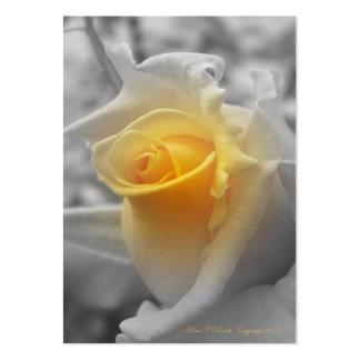 Tarjeta de visita amarilla de Grayscaled del capul