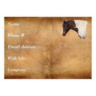 Tarjeta de visita americana occidental del caballo