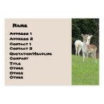 Tarjeta de visita blanca de los ciervos
