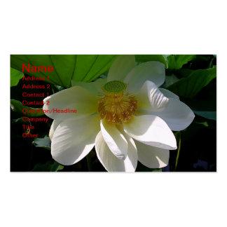 Tarjeta de visita con la flor de Lotus blanco deli