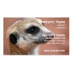 Tarjeta de visita curiosa de Meerkat