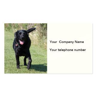 Tarjeta de visita de encargo de la foto del perro