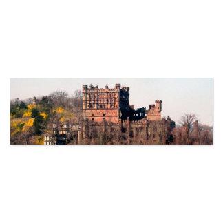 Tarjeta de visita de Geocache del castillo de