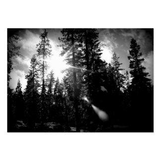 Tarjeta de visita de la arboricultura