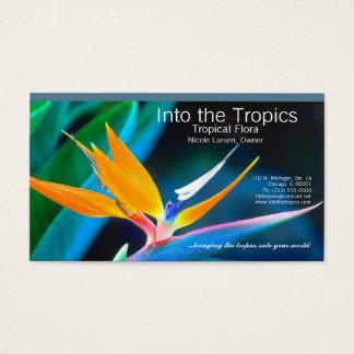 tarjeta de visita de la ave del paraíso
