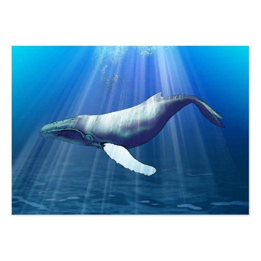 Tarjeta de visita de la ballena jorobada