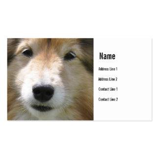 Tarjeta de visita de la cara del perro