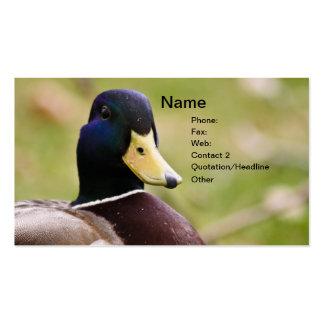 Tarjeta de visita de la caza del pato