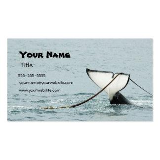 Tarjeta de visita de la cola de la ballena