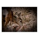 Tarjeta de visita de la fauna de los ciervos de la