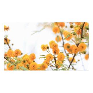 Tarjeta de visita de la flor del acacia