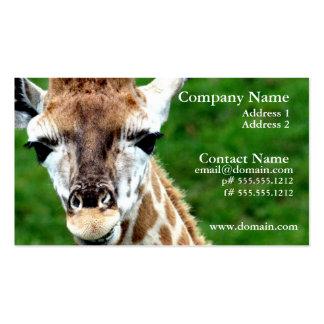 Tarjeta de visita de la foto de la jirafa