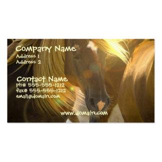 Tarjeta de visita de la foto del caballo salvaje