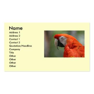 """Tarjeta de visita de la foto del pájaro del Macaw"