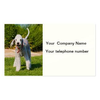 Tarjeta de visita de la foto del perro de Bedlingt