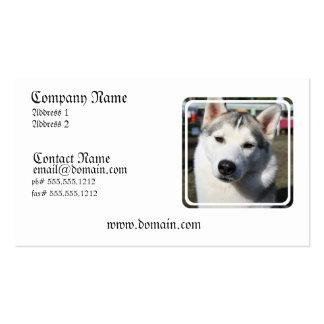 Tarjeta de visita de la foto del perro del husky s