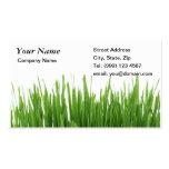 Tarjeta de visita de la hierba que cultiva un huer