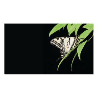 tarjeta de visita de la mariposa del swallowtail