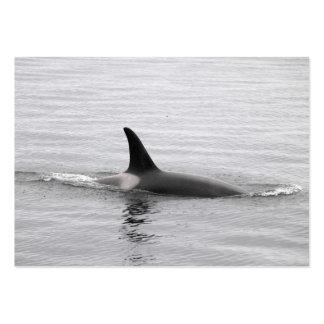 Tarjeta de visita de la orca