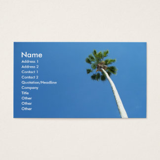 Tarjeta de visita de la palmera de West Palm Beach