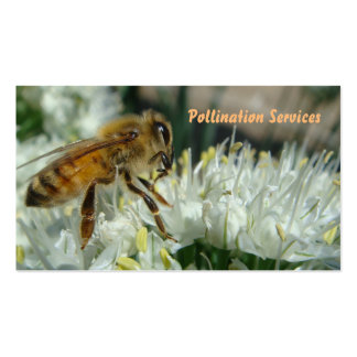 tarjeta de visita de la polinización de la abeja