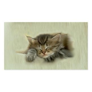 Tarjeta de visita de la siesta del gato