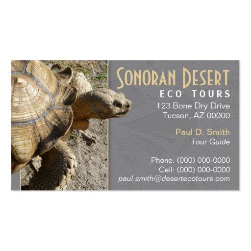 Tarjeta de visita de la tortuga/de la tortuga