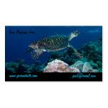 Tarjeta de visita de la tortuga de mar