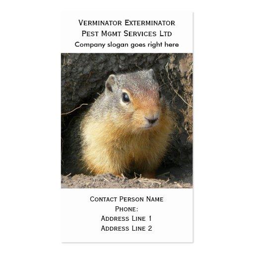 Tarjeta de visita de los bichos del roedor