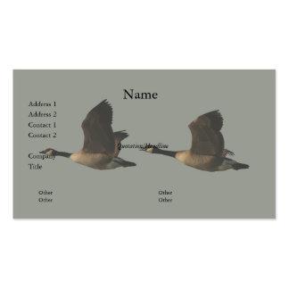 Tarjeta de visita de los gansos del vuelo